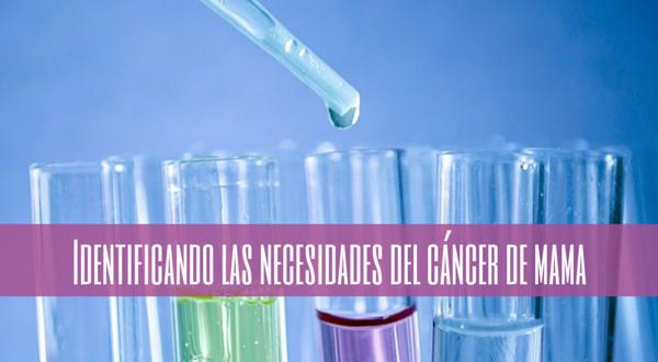 Identificando las necesidades del cáncer de mama (en el IX Congreso de GEPAC)
