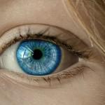 Guía de Práctica Clínica (GPC) para las distrofias hereditarias de retina (DHR)